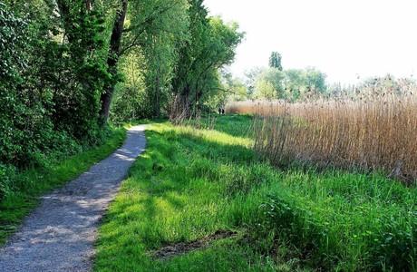 Uferweg, Reichenau
