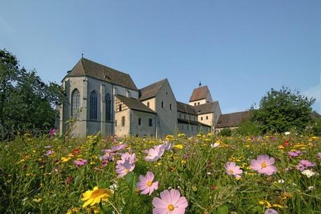Münster St. Maria u. Markus mit Blumenwiese, Reichenau