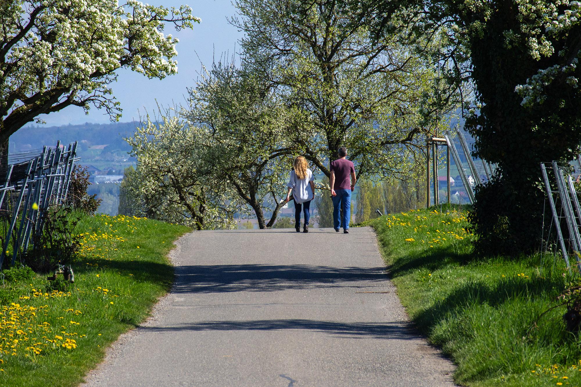 Spaziergänger im Frühjahr