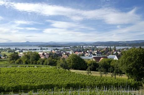 Blick von der Hochwart auf den Hegau, Reichenau