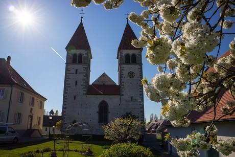 Kirche St. Peter u. Paul im Frühjahr, Reichenau